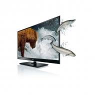 Televizor Toshiba 42 WL863G